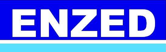 enzed logo